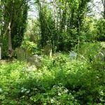 #abneypark # abneyparkcemetery #historiccemetery