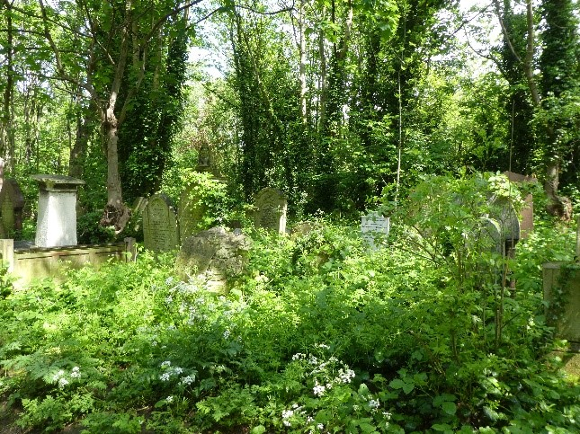 Abney Park Cemetery Activity Plan